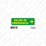 CARTEL FOTOLUMINISCENTE SALIDA DE EMERGENCIA, MATAFUEGOS AVENIDA, venado tuerto
